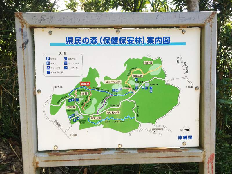 Forest of Residence Trail   Okinawa Hai!