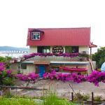 Ippukuya Café   Okinawa Hai!