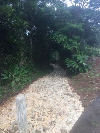Zakimi walking path-006