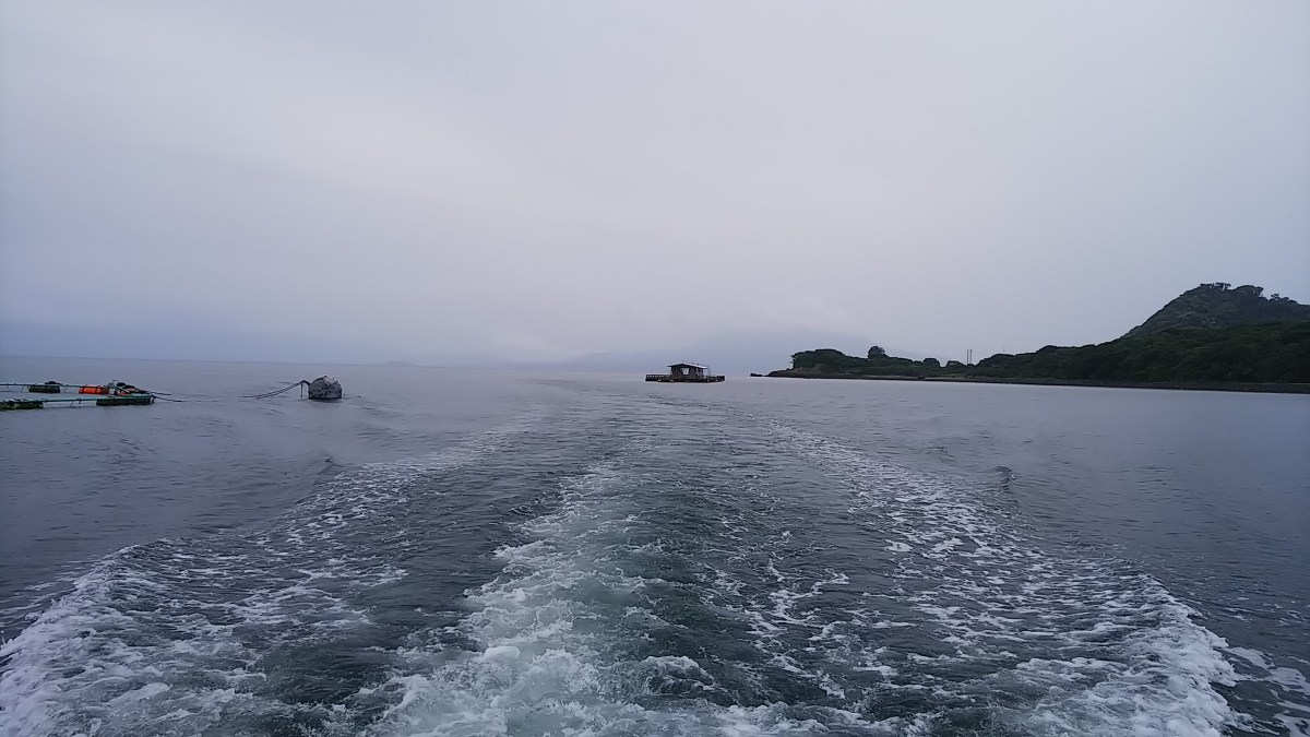 隼人の海で初坊主