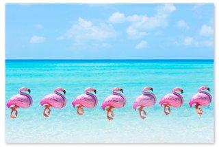 gray malin flamingo balloons