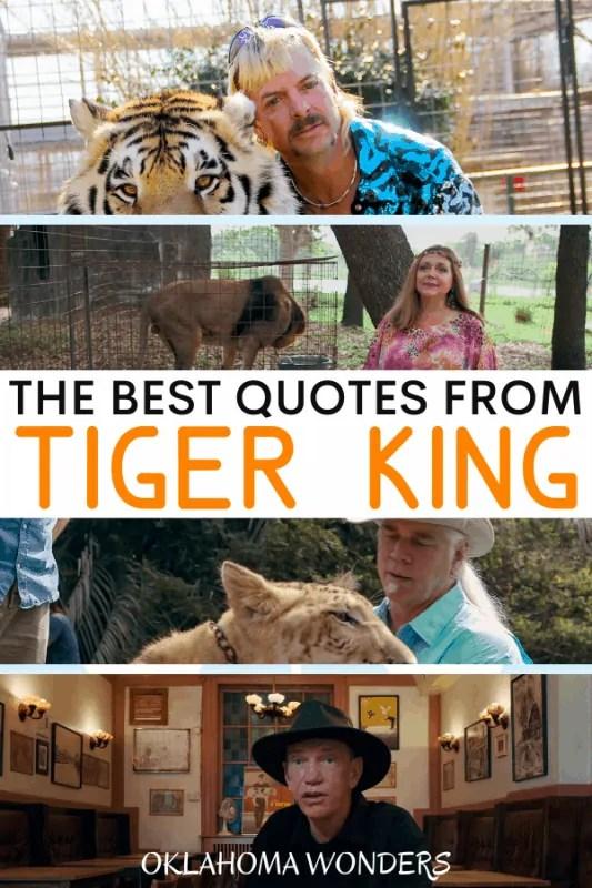 Black White Tiger Motivational Challenge Poster Zazzle Com