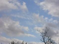 oblaci_draca1