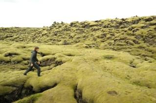Trčanje po polju mahovine