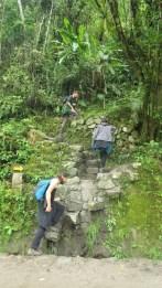 Na putu do Machu Picchua
