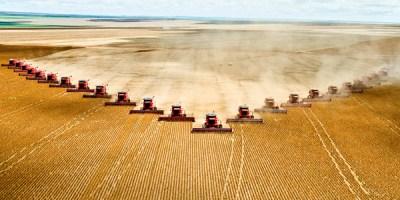 Corporate-Farming