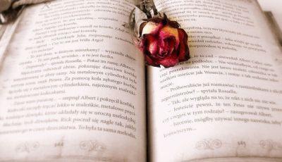 come scrivere un romanzo d'amore