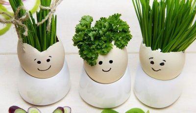 idee per il riutilizzo dei gusci d'uovo