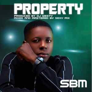 SBM - Property