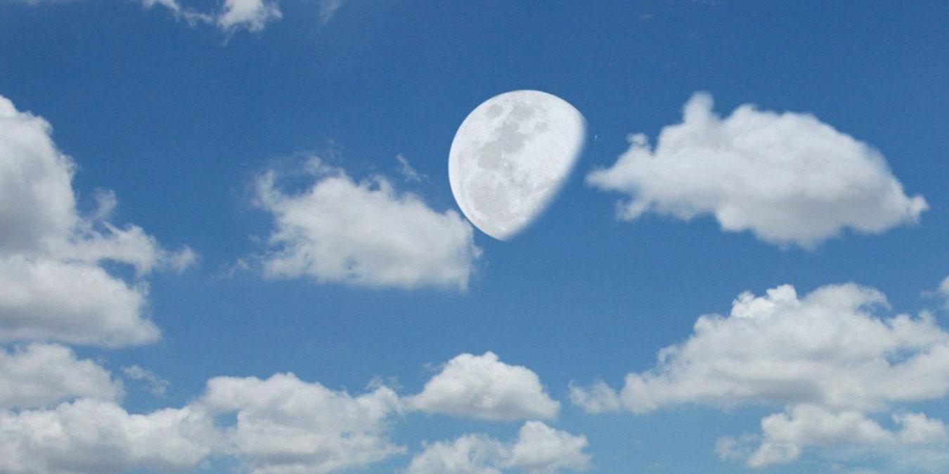 Niçin ayı bazen gündüz de görüyoruz?, OkuGit.Com - Tarih, Güncel, Kadın, Sağlık, Moda Bilgileri Genel Bloğu