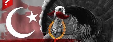 İngilizce'de Hindiye Niçin Turkey Deniliyor?, okugit