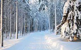k3 8 - Niçin kar yağıyor ?