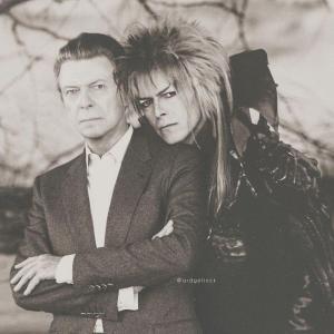 David Bowie 300x300 - Ünlülerin Genç ve Yaşlı Halleri