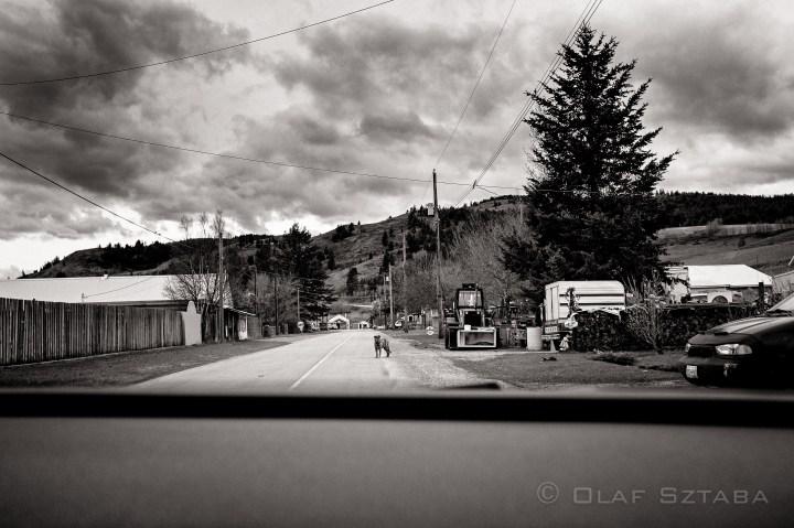 ©osztaba_okanagan_20130427_DSCF2935-Edit-Edit