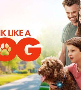 Think Like a Dog (2020) Bluray Google Drive Download