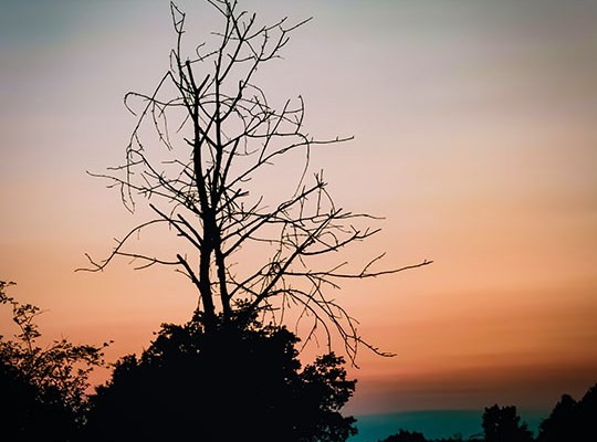 After Sundown – Break of Night