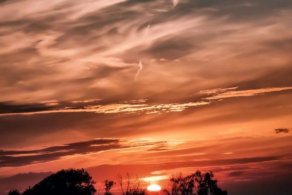 Sun Down Chronicles 13_8_21