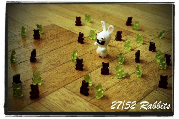 rabbit27