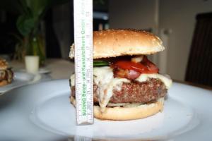 Burger 040