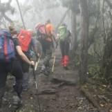 Il primo giorno, sul sentiero nella foresta pluviale, verso il Machame Camp