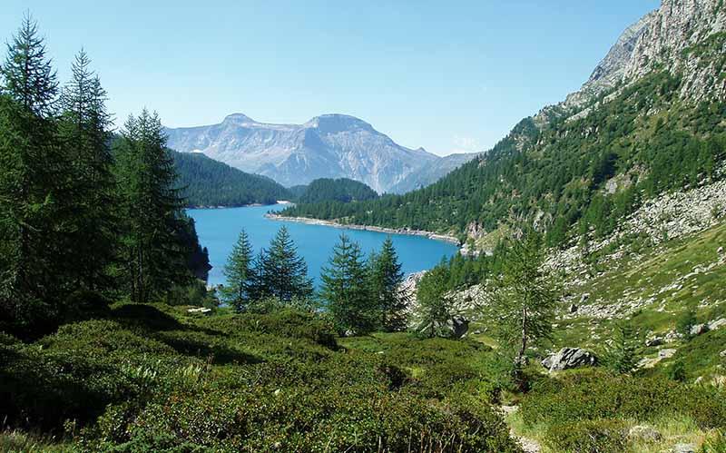 Il Monte Cistella e il Pizzo Diei dai piani alti di Devero (ph. Paolo Crosa Lenz)