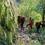 6. Passaggio nella foresta (ph E. Ferri – K2014.it)
