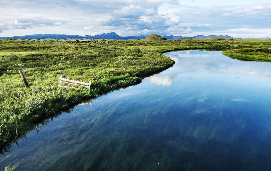 Paesaggi vicino il lago Myvatn, domenica 27 luglio