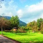 Ambiente agrario a valle di Facen (Pedavena)