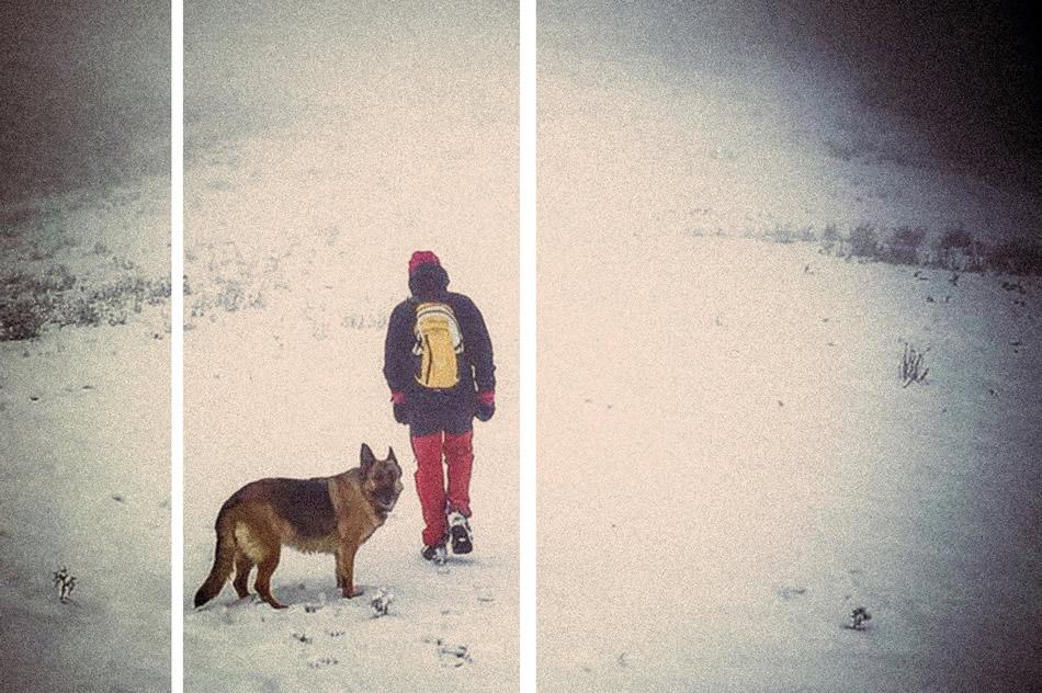 Neve e tracce in Appennino