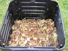 Listie v komposteri