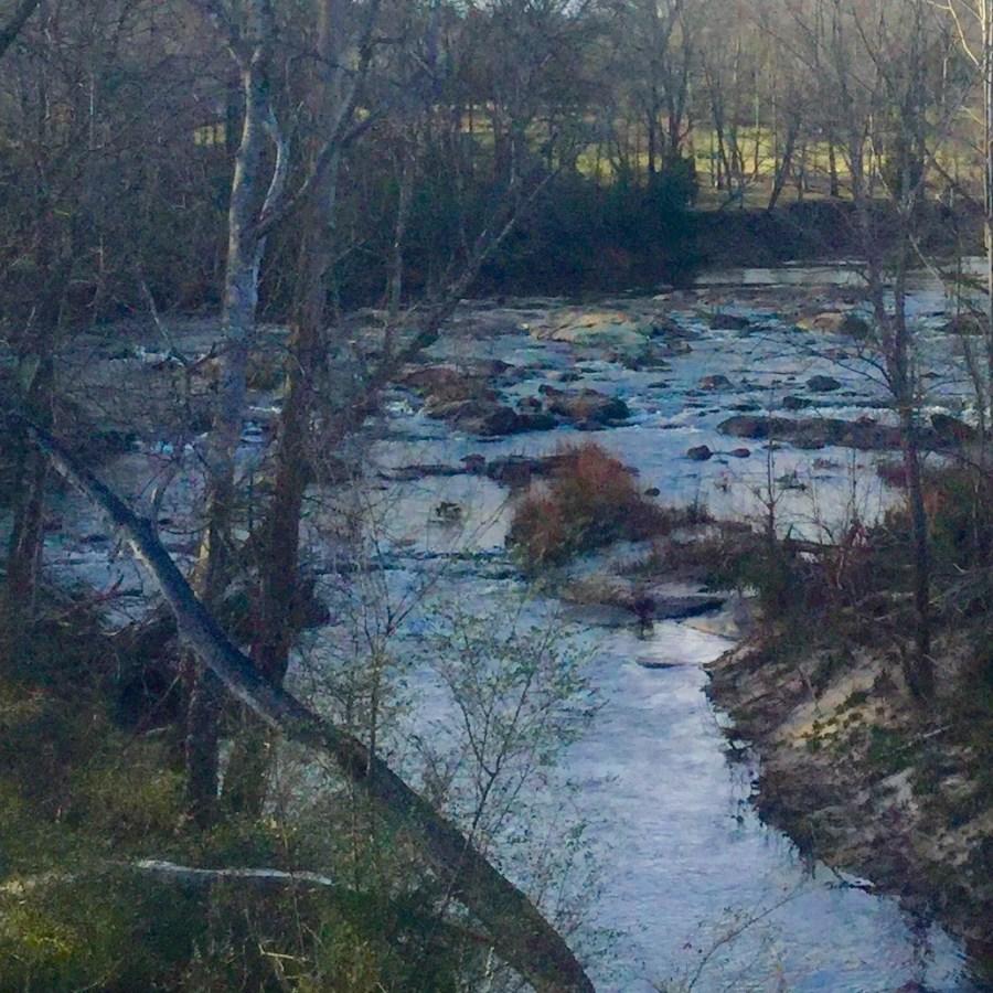 Ogeechee Rapids
