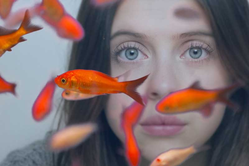 Review: Carrie Pilby