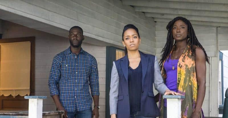 Kofi Siriboe, Dawn-Lyen Gardner, and Rutina Wesley in Queen Sugar