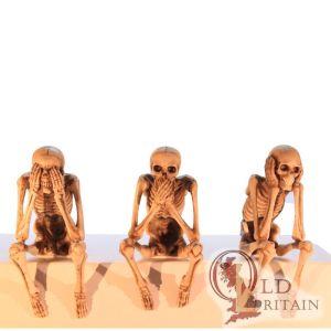 Three Wise Skeletons