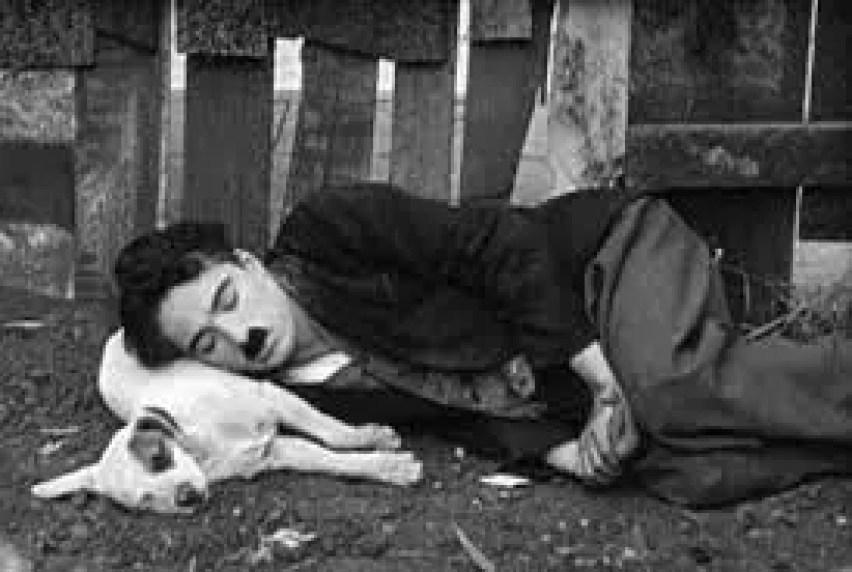Najlepsze filmy Chaplina - Pieksie życie