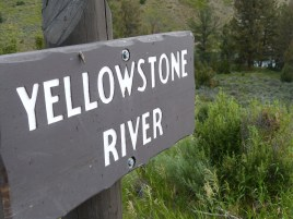 yellowstone river sign