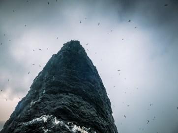Sea Stacks - St Kilda