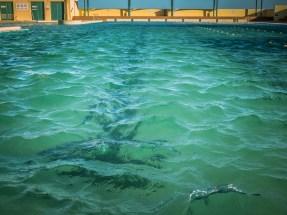 Port Kembla Pool