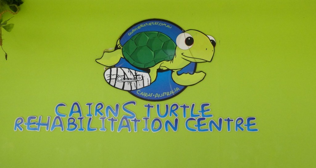 Turtle Rehab Centre