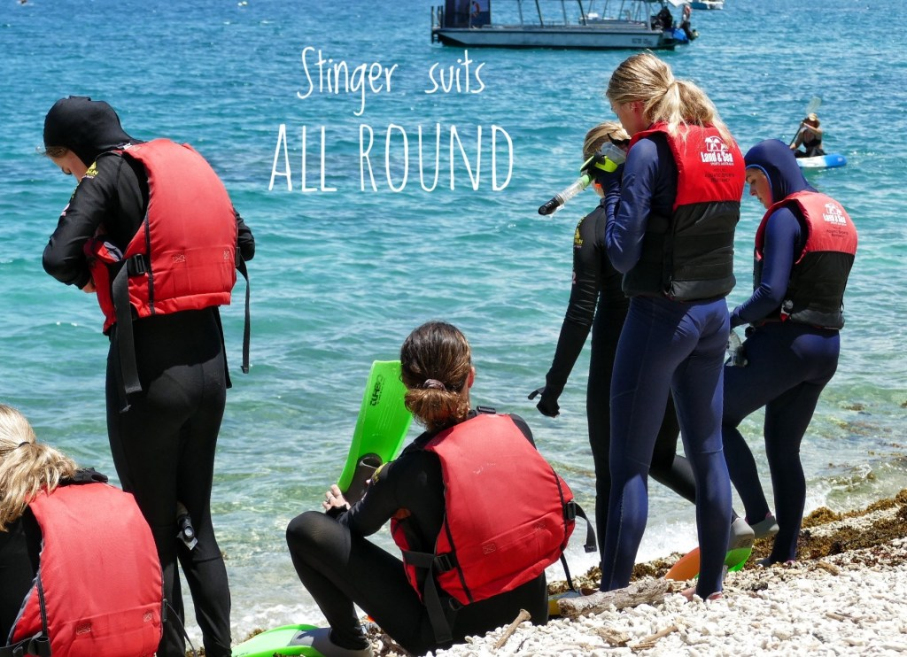 4 girls wearing full body stinger suits getting ready to enter the water