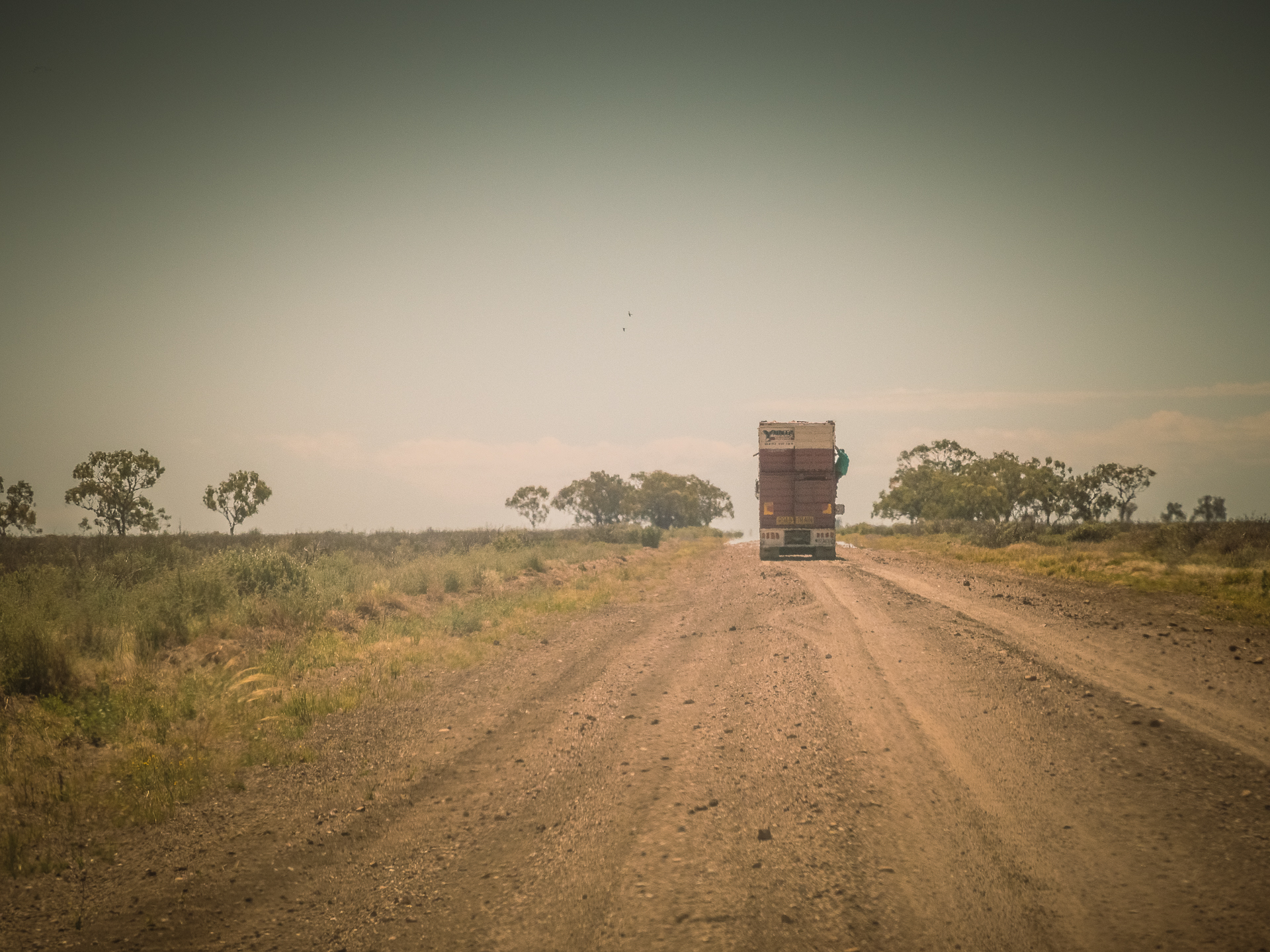 Stock truck stopped on side of road