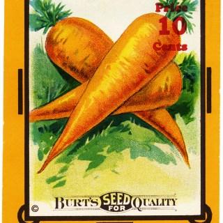 Burt's Seed Vintage Carrot Seed Packet