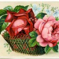 victorian trade card, basket of flowers, free digital vintage image, vintage trading card, red and pink flower in basket, vintage illustration of flowers, antique floral card, digital clipart download, public domain card, old design shop