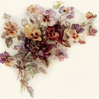 Vintage Bouquet of Pansies