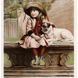 Victorian Trading Card ~ Besse, Besse & Co.,