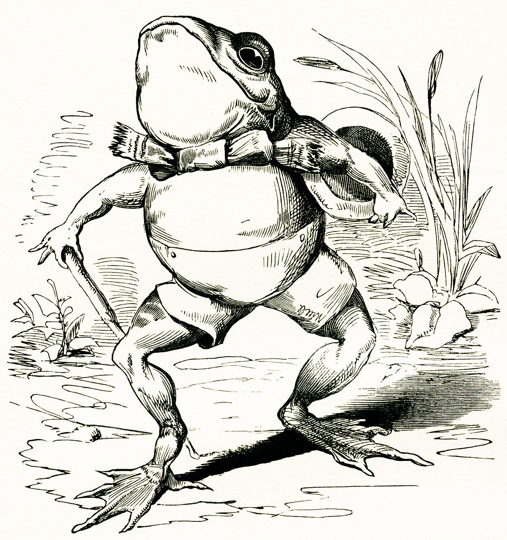 Fairytale Frog Vintage Image   Old Design Shop Blog