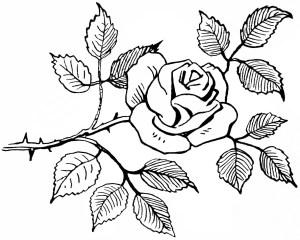 free vintage image, black and white, rose graphic, free printable rose, free vintage clipart flower, rose sketch, digital rose graphic, flower image