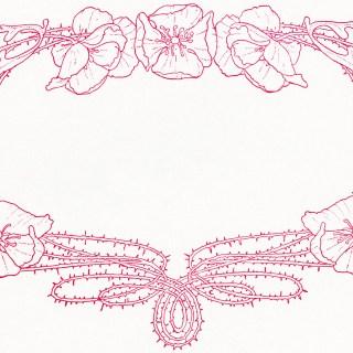 Pink Floral Frame Design