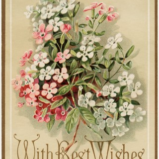 Marcus Ward & Co Floral Greeting Card