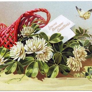 Free Vintage Image ~ Flowering Clover Postcard